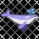 Whale Killer Whale Mammal Icon
