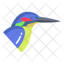 King Fisher Birds Bird Icon