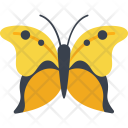 Kite Fly Insect Icon