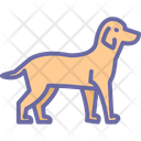 Kitty Pet Wildlife Icon