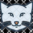 Kitty Cat Cat Kitty Icon