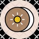 Kiwi Fruit Slice Icon