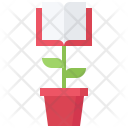 Knowledge Training Growth Icon