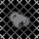 Koala Animal Zoo Icon