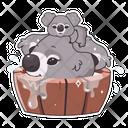 Koalas With Mom Icon