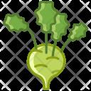 Kohlrabi Vegetable Food Icon
