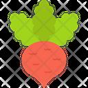 Kohlrabi Icon