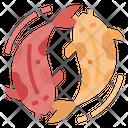 Koifish Fish Chinese Icon