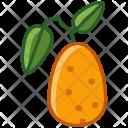 Kumkvat Fruit Fit Icon