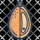 Kumquat Fruit Healthy Icon