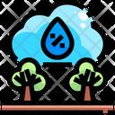La Nino Icon