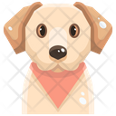Labrador Retrievers Icon