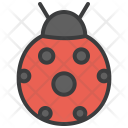 Lady Bug Insect Icon