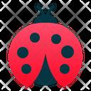 Lady Bug Bug Insect Icon