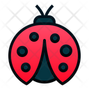 Lady Bug Bug Insect Icon