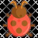 Lady Bug Bug Animal Icon