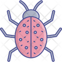 Beetle Insect Lady Beetle Icon