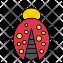 Ladybird Insect Bug Icon