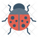 Ladybird Bee Insect Icon