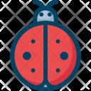 Ladybug Bug Spring Icon