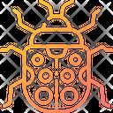 Ladybug Bug Beatle Icon