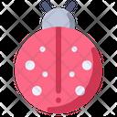 Ladybug Bug Insect Icon