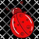 Ladybug Insect Beetle Icon