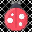 Spring Ladybug Bug Icon