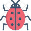 Ladybug Insect Animal Icon