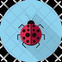Ladybug Insects Flying Icon