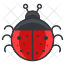 Ladybug Animal Icon