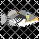 Lagoon Triggerfish Icon