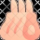 Lamb Rack Icon