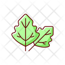 Lambs Quarters Lambsquarters Goosefoot Icon