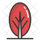 Cypress Tree Bald Icon