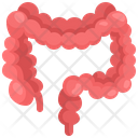 Larg Intostine Organ Body Part Icon
