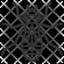 Larva Icon