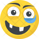Happy Grinning Emoticons Icon