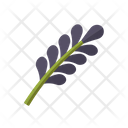 Lavender Flower Oil Icon