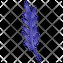 Lavender Flowering Plant Lavandula Icon