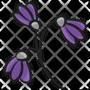 Lavender Blossom Flower Icon