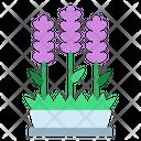 Lavender Plant Purple Icon