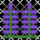 Lavender Flower Aromatic Icon