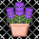 Lavender Flower Violet Icon