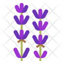 Lavender Flower Smell Icon