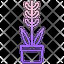 Lavender Plant Lavender Pot Lavender Icon