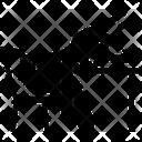 Lax Icon