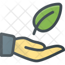 Leaf Protect Hold Icon