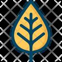 Leaf Nature Tree Leaf Icon