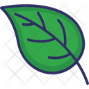 Leaf Greenery Nature Icon